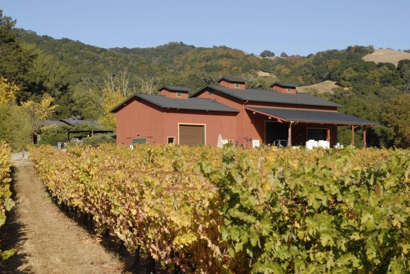 winery.jpeg