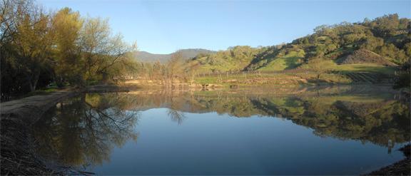 pond afternoon.jpeg