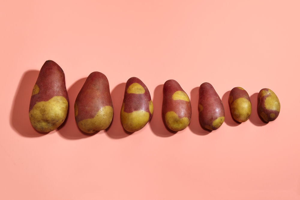 Potatoes_8x12_300dpi.jpg