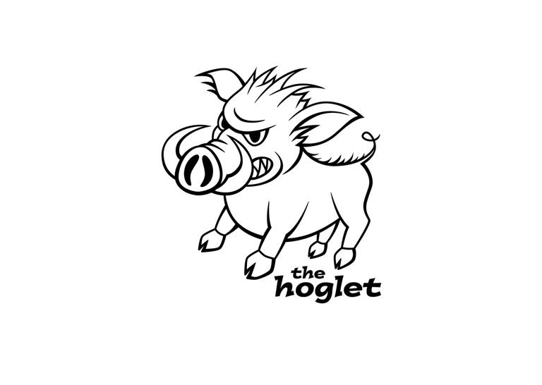 The Hoglet by Channel Islands Surboards