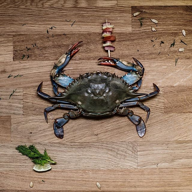 Everyone needs an umbrella these days. For your seafood needs come check us.  #toronto #the6 #seafood #fotb416 #softshellcrab #queenwest #picoftheday