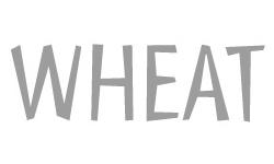 wheatpopup.jpg