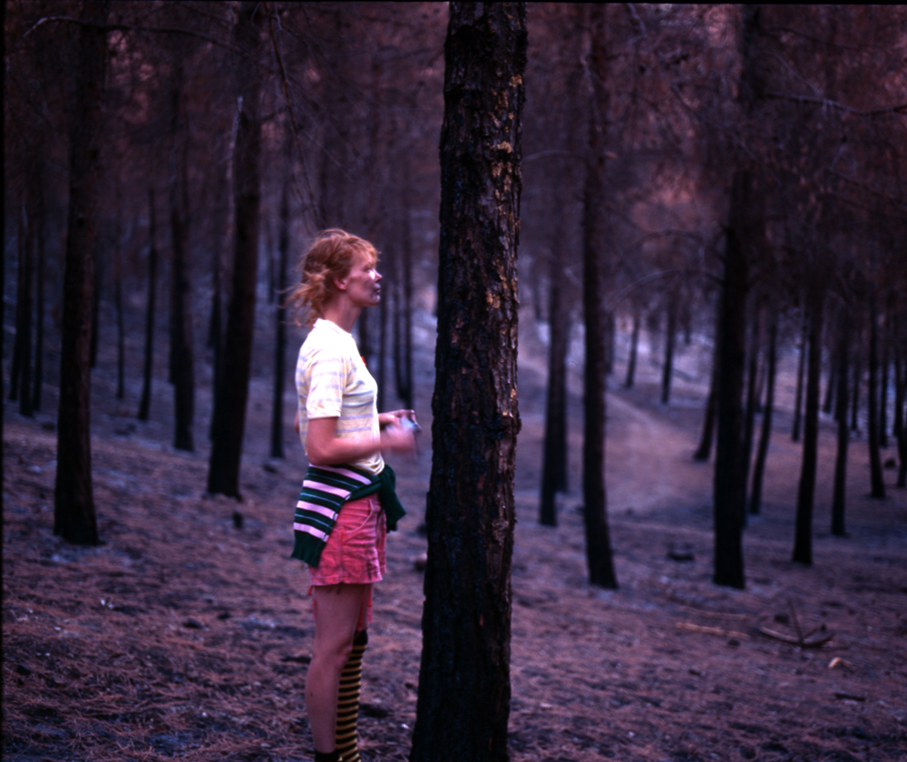 006-pippi-forest-profile-72.jpg