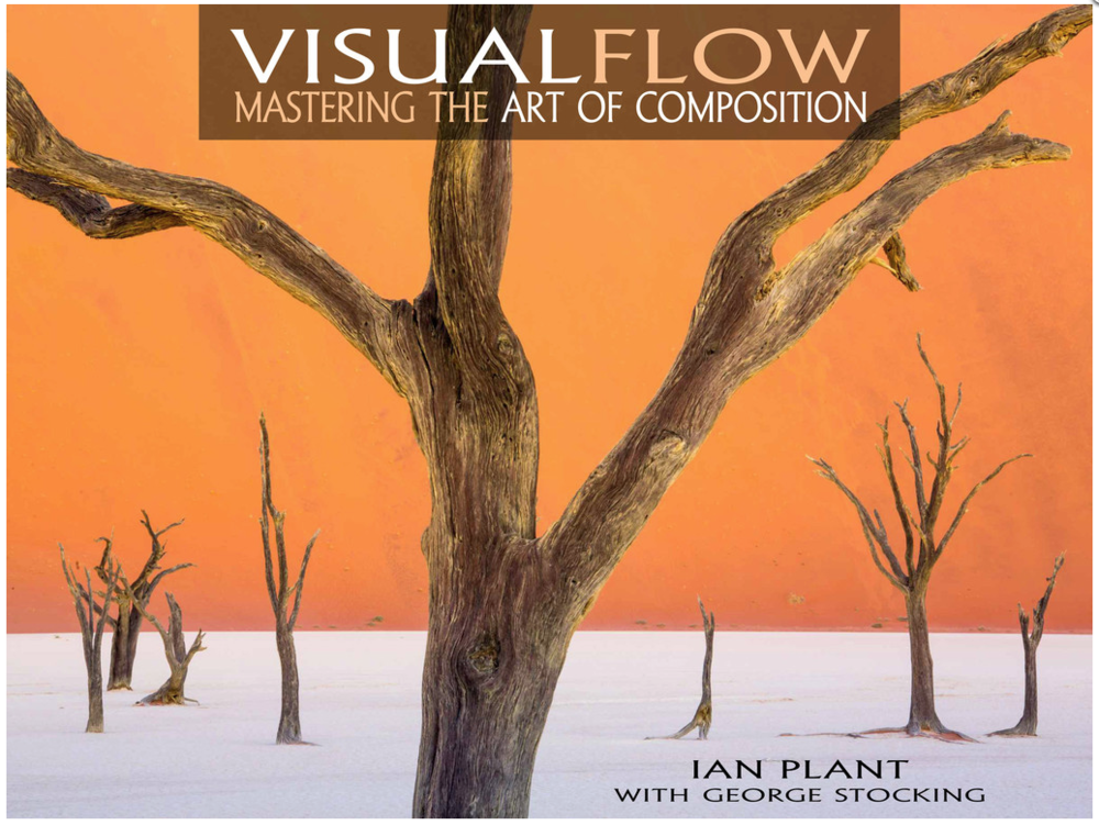 Visual Flow by Ian Plant