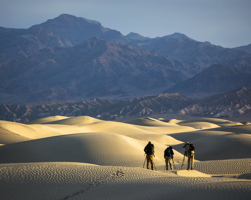 Desert Dwellers (Photo by Josh Merrill)