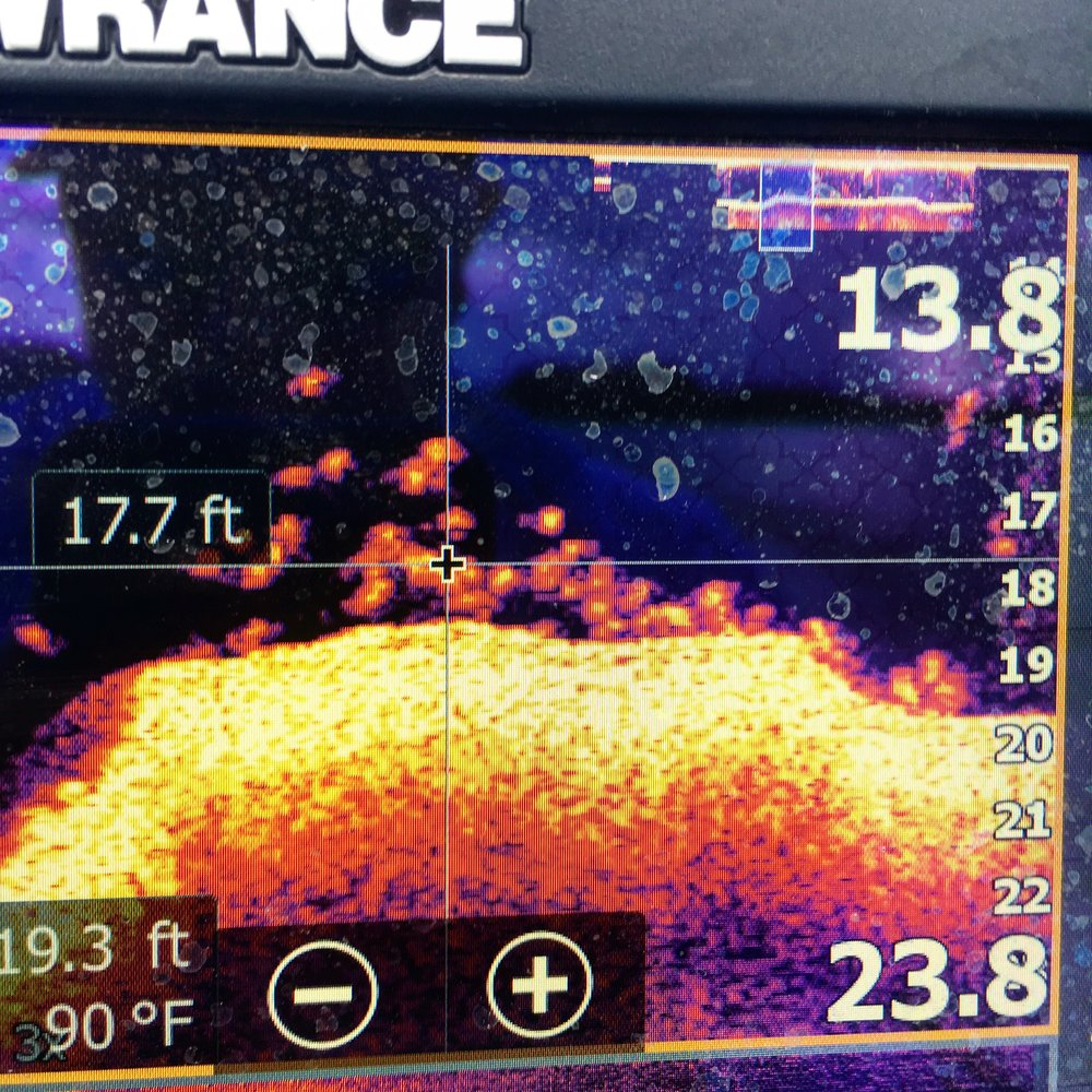 This is the kind of school that can save the day. Deep water fishing is a game changer when you find them stacked up like these spotted bass! Lowrance