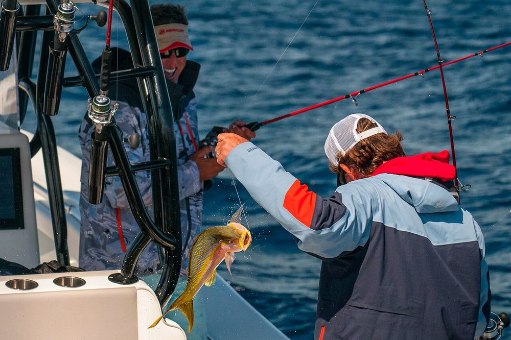 Steve Rodger wrangles a healthy Yellowtail into the boat