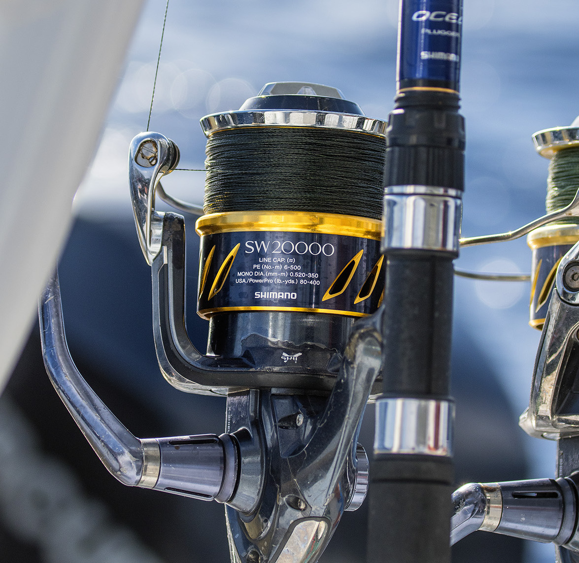 Shimano | Spinning Reel — Into the Blue Fishing Blog