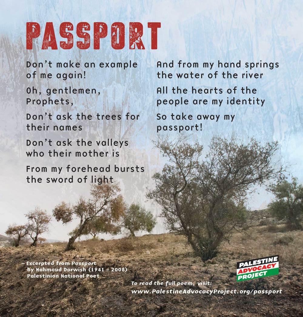 PalAd-Passport-Web.jpg