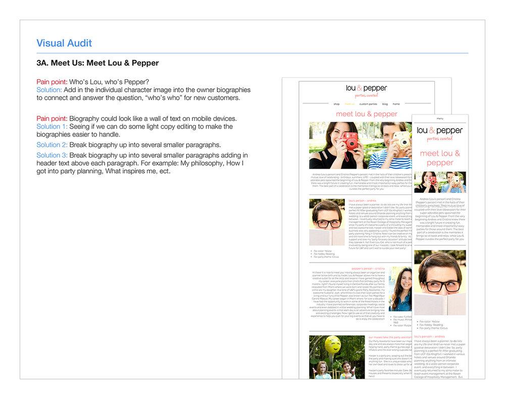 Visual-Audit-3B.-Meet-Us-Meet-L&P.jpg