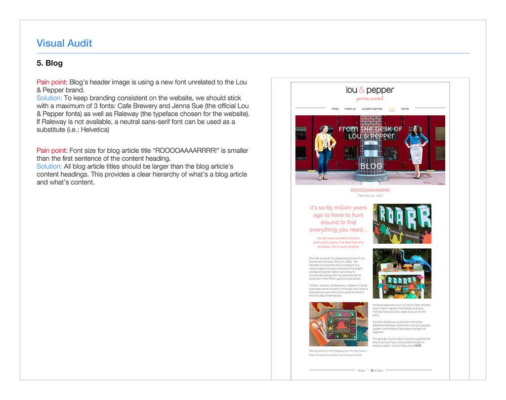 Visual-Audit-5.-Blog.jpg