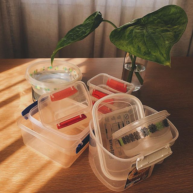 I'm a firm believer in using what you've got! Don't go out and buy new fancy containers, use the ones you already have until they fall apart. We need less consumption and better utilisation of resources we already have 🌏💚♻️