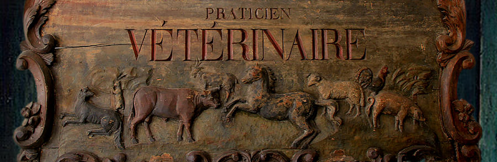 vintage-veterinarian-sign-andrew-fare-cropped.png