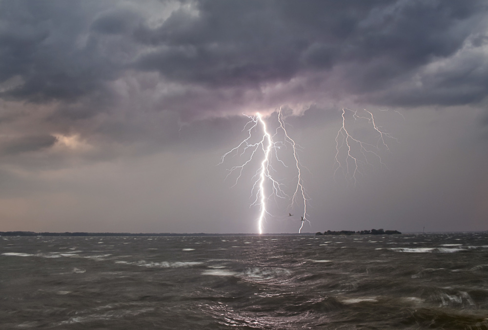 Two lightning strikes behind a pair of birds, over the Indian River in Titusville, Florida