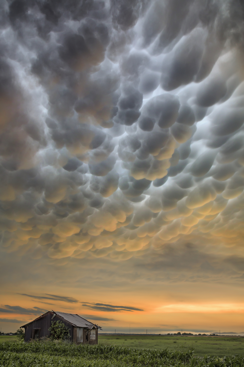 Mammatus clouds over Jonah, Texas after training tornadic supercells caused devastating flooding across the area.