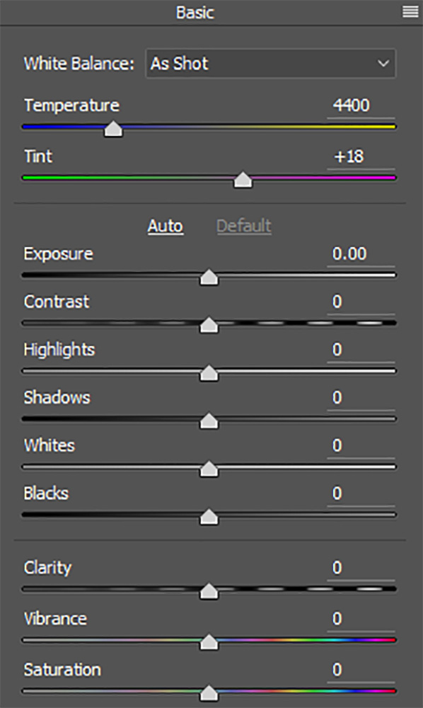 Adobe Camera Raw uses intuitive panels and sliders to make image adjustments.