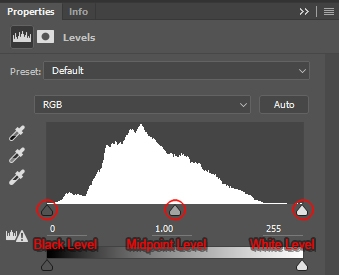 Levels Adjustment Layer Panel depicting the image's default histogram