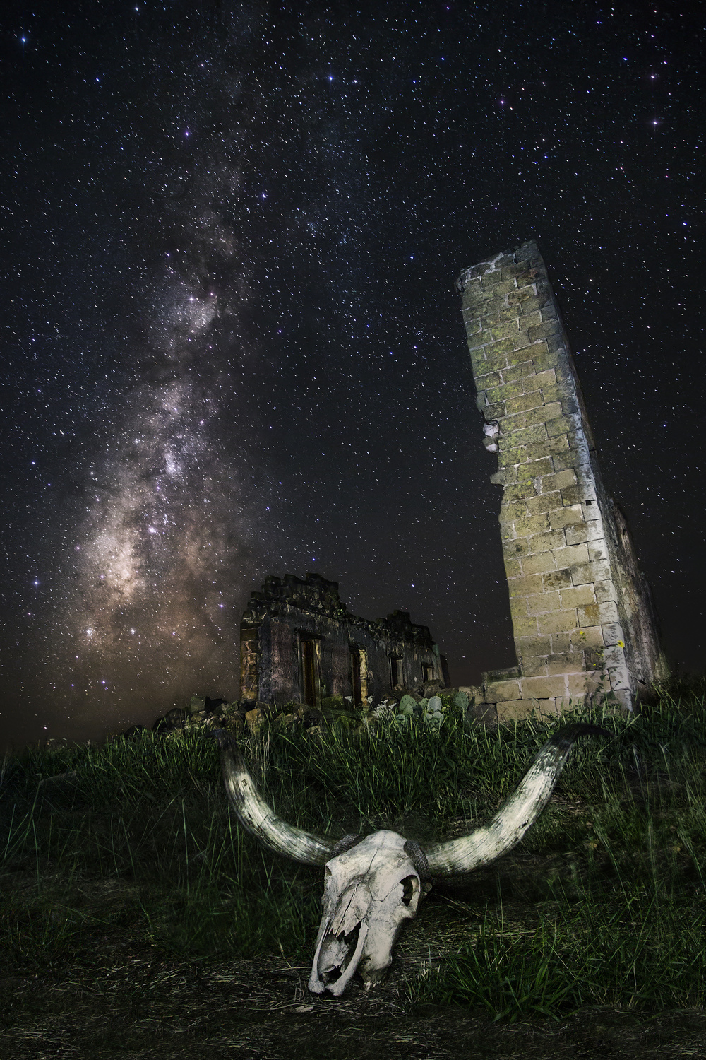 A longhorn skull sits in front of the now completely collapsed San Fernando Academy ruins (2013).