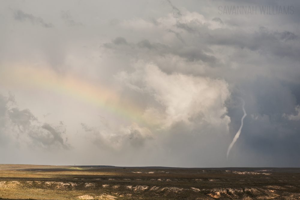 Tornado near Groom, Tx. Image by Savannah Williams. I sat back and enjoyed the moment.