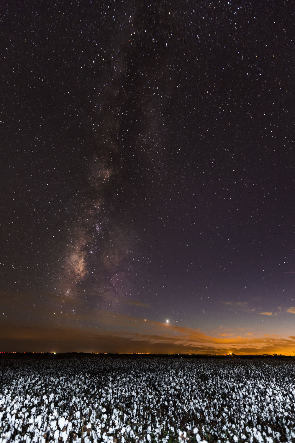 The Milky Way and sun setting over a cotton field outside of Colorado City, Tx.