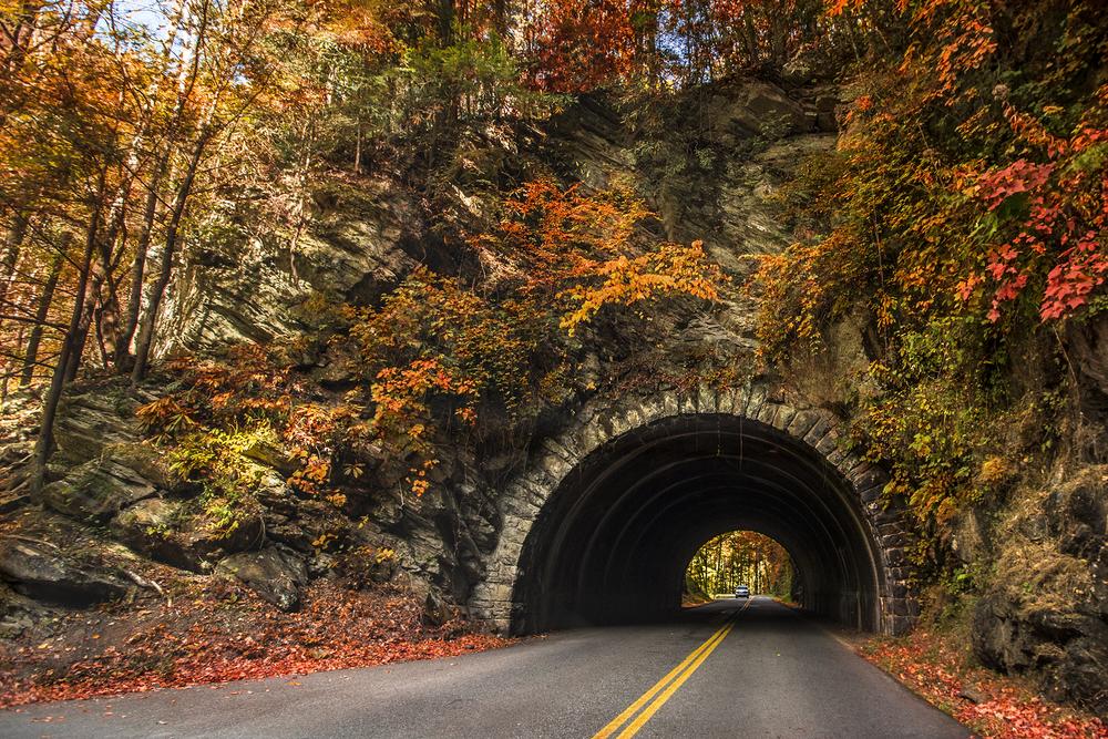 Autumn tunnel. Gatlinburg, Tn.