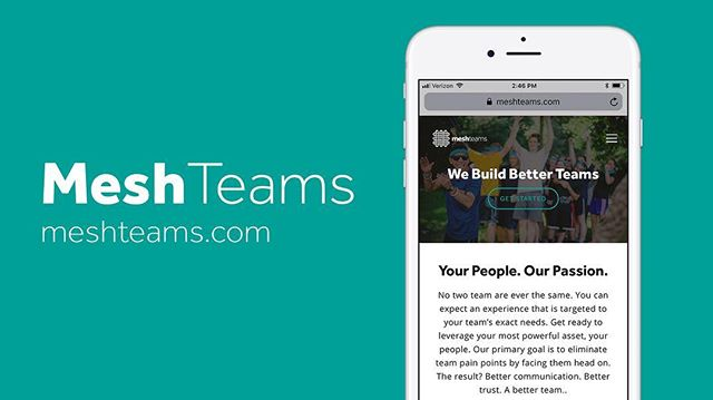Today @jordancarter7 and I launched a new company called @meshteams, dedicated to one simple goal, building better teams. Follow us @meshteams for updates and you check out what we do, and why we do it at the link in my bio 🙌