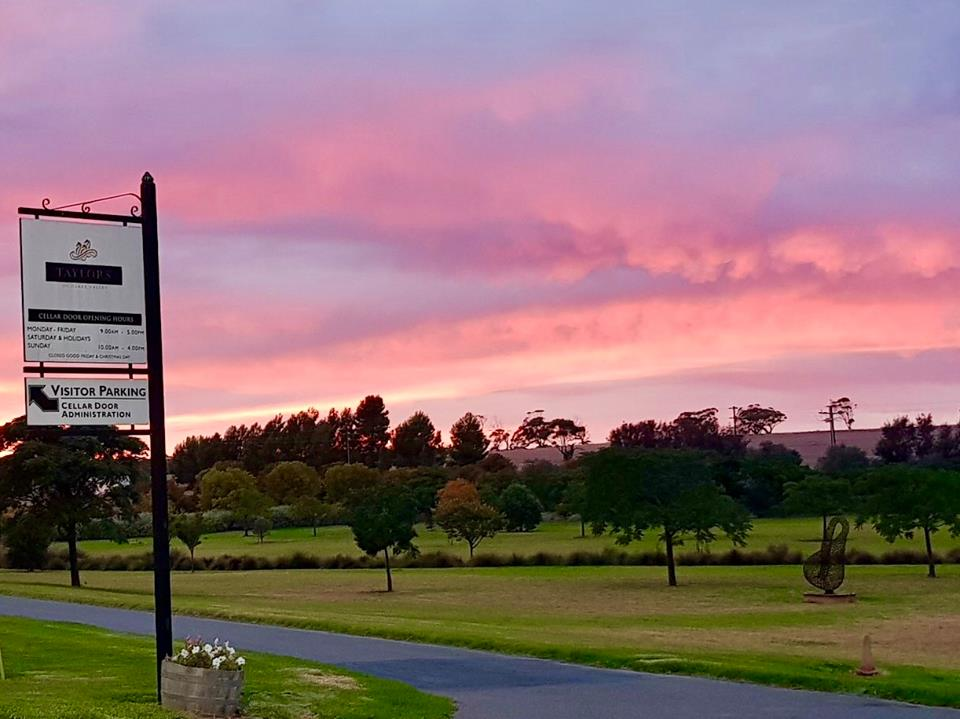 Taylors Cellar Door Sunrise