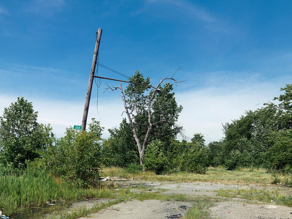 Corner-of-33rd-and-Edsel-Ford-W,-Detroit-2015_6589359.jpg