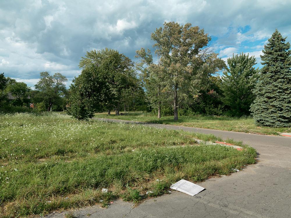 Corner-of-Wade-and-Nottingham,-Detroit-2015_6589860.jpg
