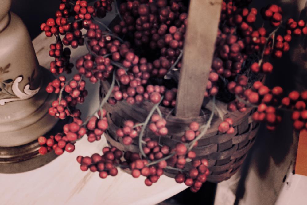 berriesinbasket.jpg