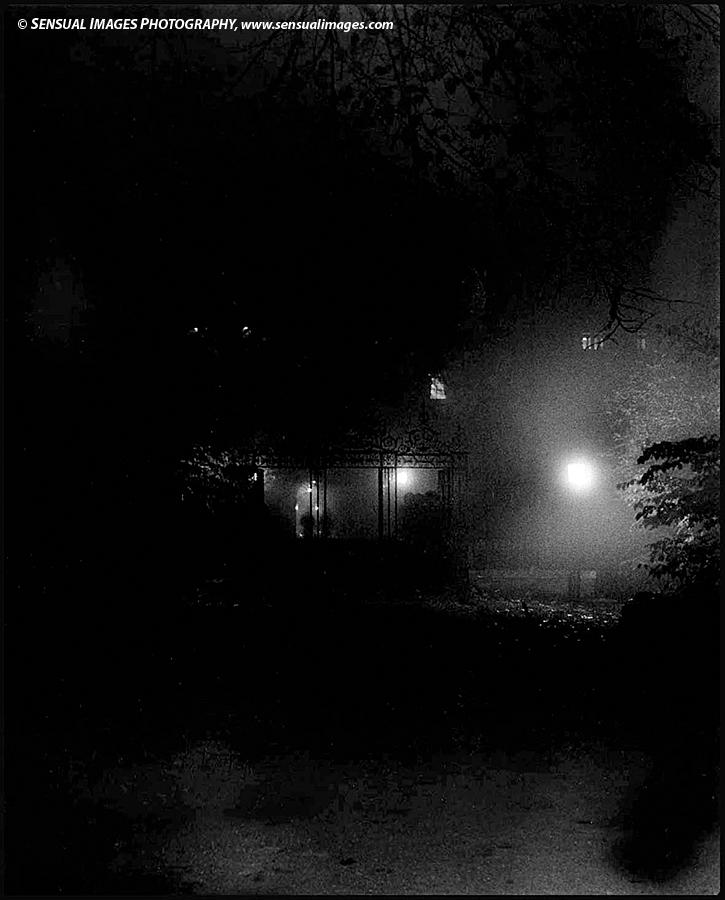 Clare-Fog-me.jpg