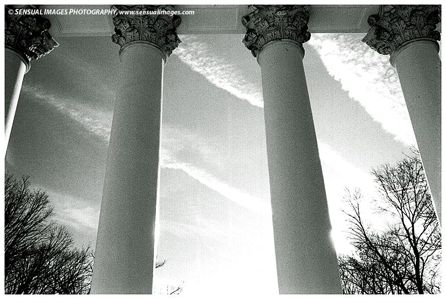 Columns-UniversityofVA1-me.jpg