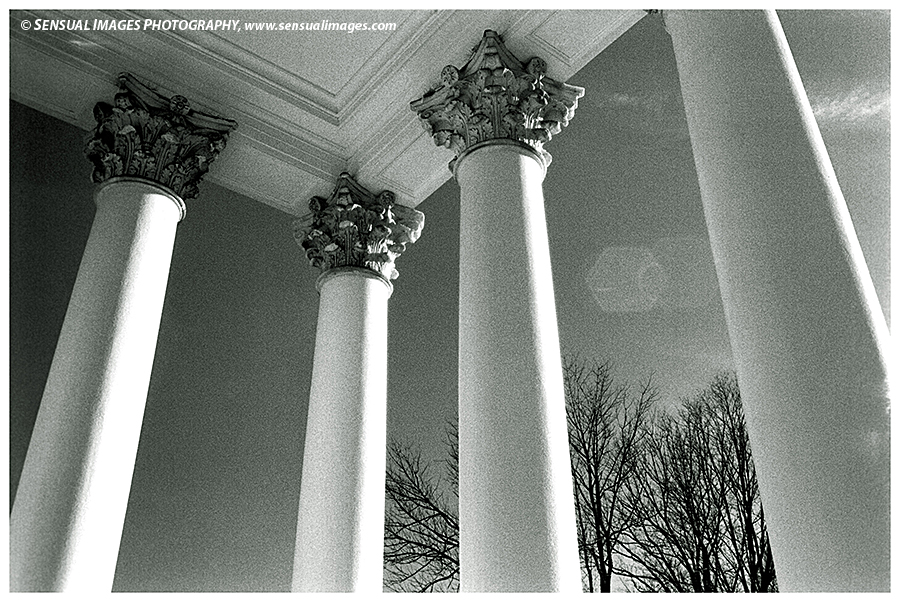 Columns-UniversityofVA2-me.jpg