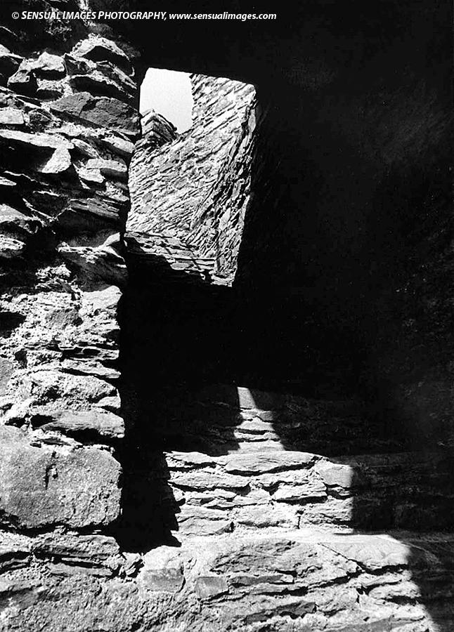 Totnes-Castle-me.jpg
