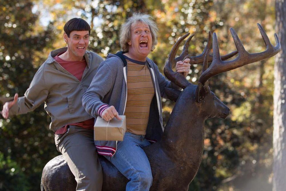 Jim Carrey och Jeff Daniels i Dum och dummare 2