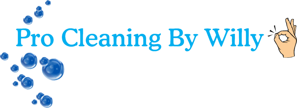 Pro Cleaning By Willy Logo.png