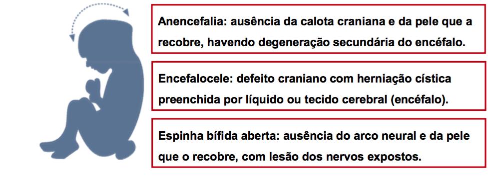 """Figura da palestra """"Prevenção das malformações fetais"""", com dr. Eduardo Borges da Fonseca"""