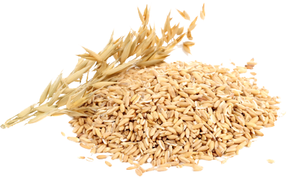 oat-pile.png