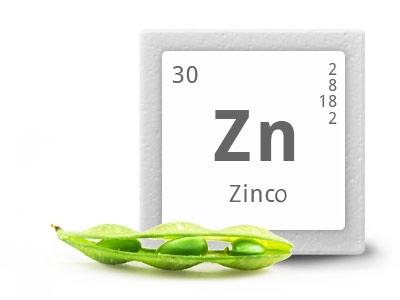 zinco.jpg