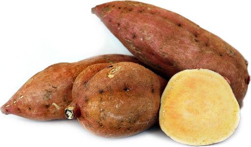 A batata yacon é rica em fibras é rica em fibras prebióticas, que alimentam as bactérias boas do intestino, melhorando a imunidade e ajudando a controlar a glicemia. Deve ser consumida crua, como uma fruta.