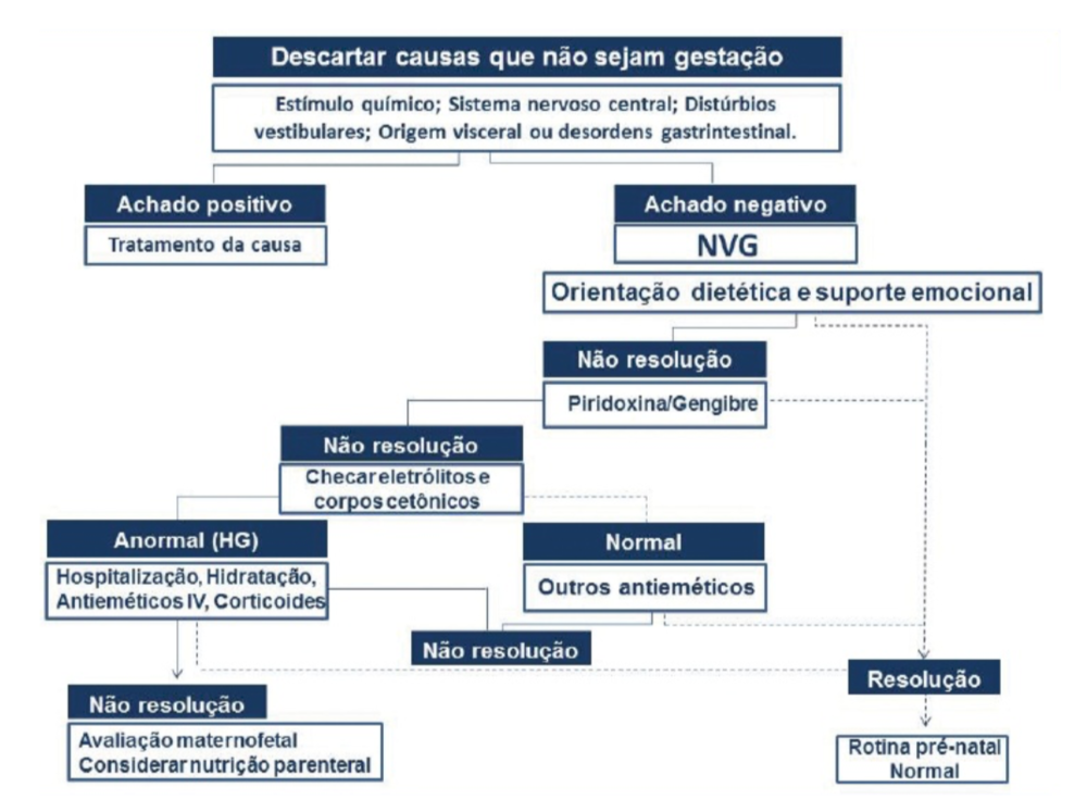 Algoritmo recomendado pela Federação Brasileira das Associações de Ginecologia e Obstetrícia (FEBRASGO) para o tratamento de gestantes que apresentam náuseas e vômitos na gestação.