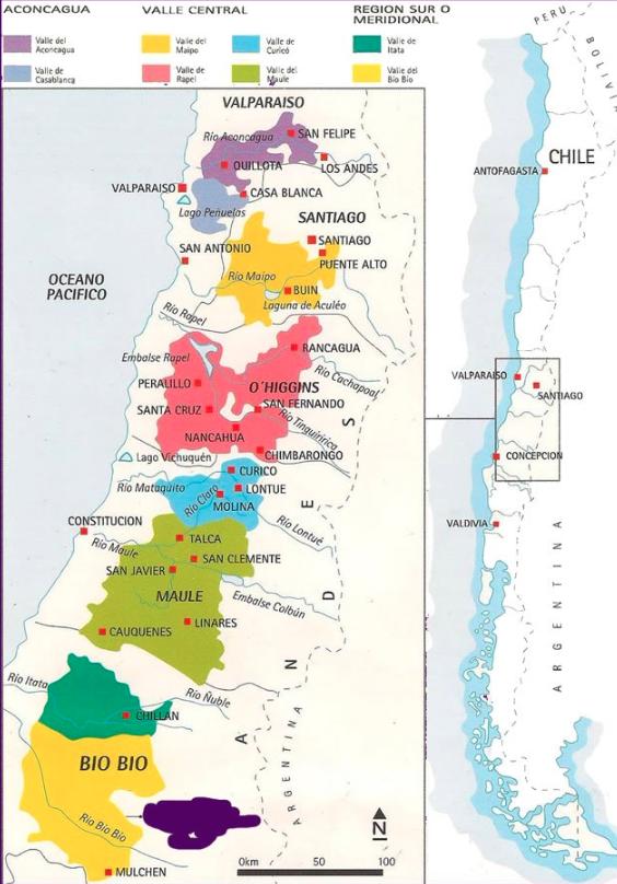Rota dos vinhos no Chile