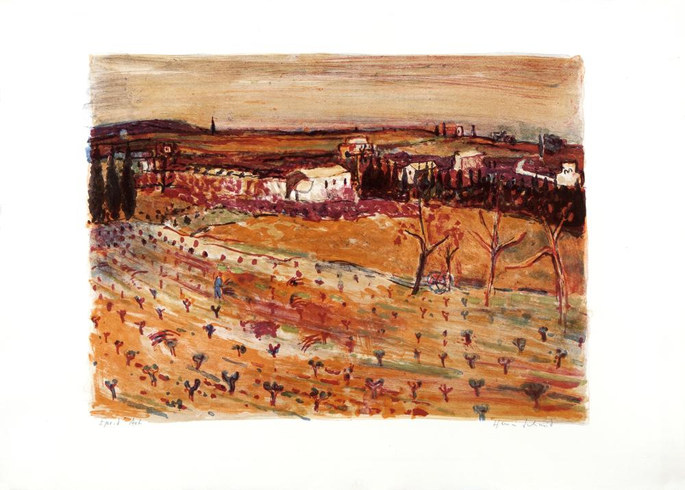 Rebfelder in der Provence  Lithografie, 63.5x89.5cm