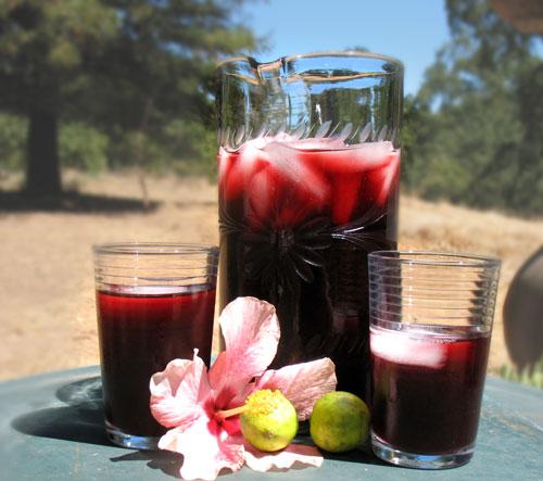 Image credit:sensibiliteas.blogspot.com