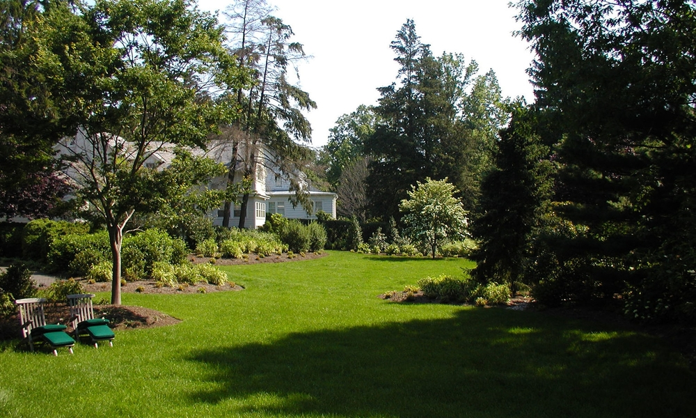 spacious backyard doylestown