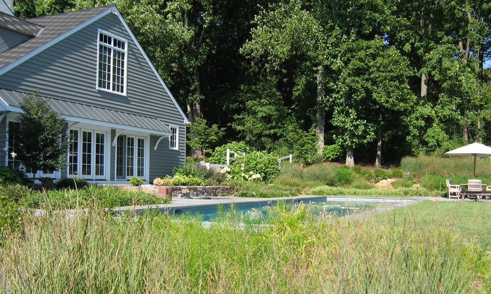 perennials and grasses by pool