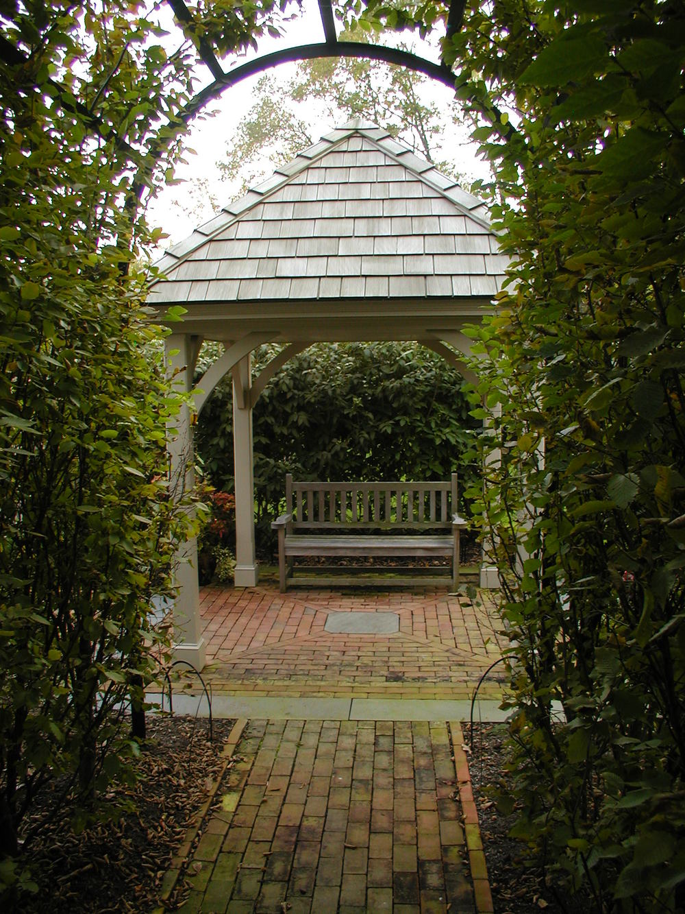 lightfoot house colonial european hornbeams trellis williamsburg wellhouse