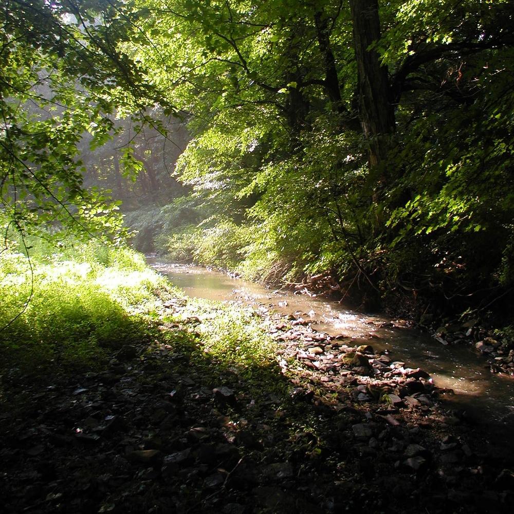 Lenape Park Master Plan