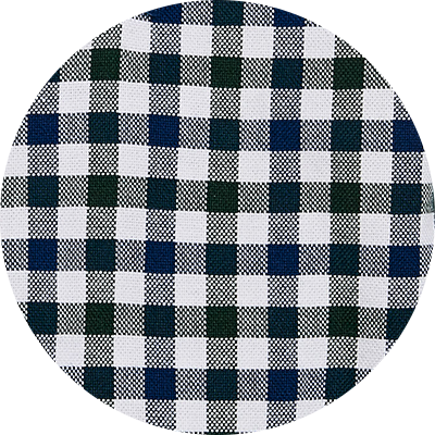 300 Navy/white check