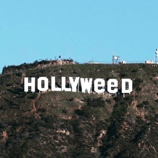 This happened early this am.  #hollywoodsign #hollywood #hollyweed